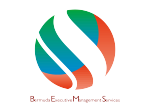 BEMS Group Consulting Services